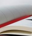 2020教师年度个人述职报告(原创范文)