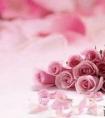 爱情失落说说心情短语,有没有戳中你的心?