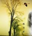 林清玄经典语录大全,最好的表达是沉默