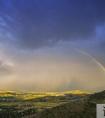 关于有关彩虹的励志的句子25句