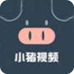 小猪视频安卓软件